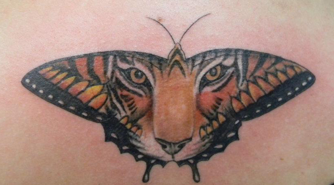 Joe Marzolf Tiger Butterfly